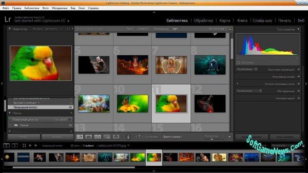 Adobe Photoshop Lightroom Classic CC 2019 (RUS/RePack)