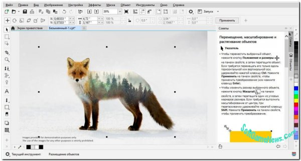 CorelDRAW Graphics Suite 2021 (32-64 bit/RUS)
