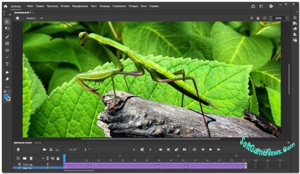 Adobe Animate CC 2020 (RUS)