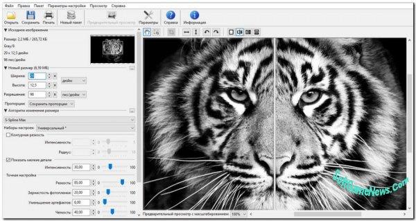 Benvista PhotoZoom Pro v.8.0.6 (Full + Portable)